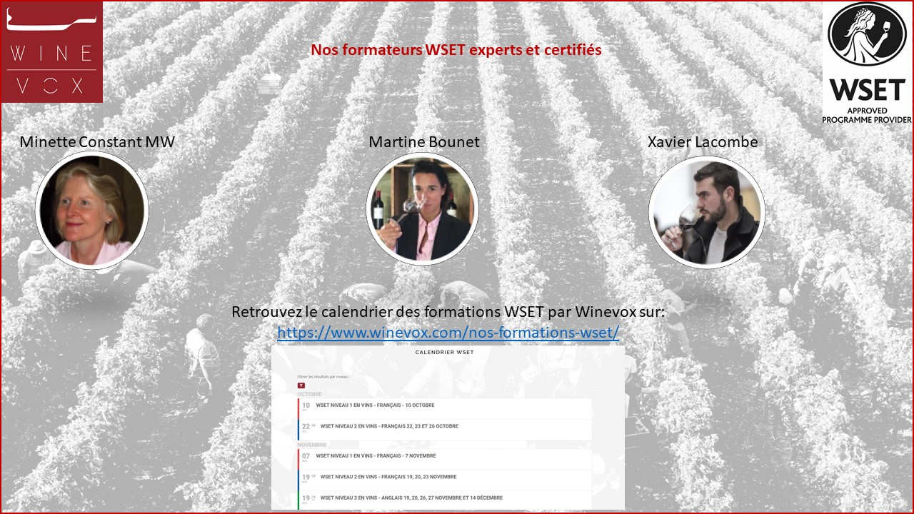 Winevox renforce son équipe de formateurs WSET